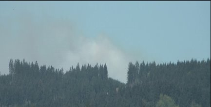 2-acre wildfire in Capitol State Forest
