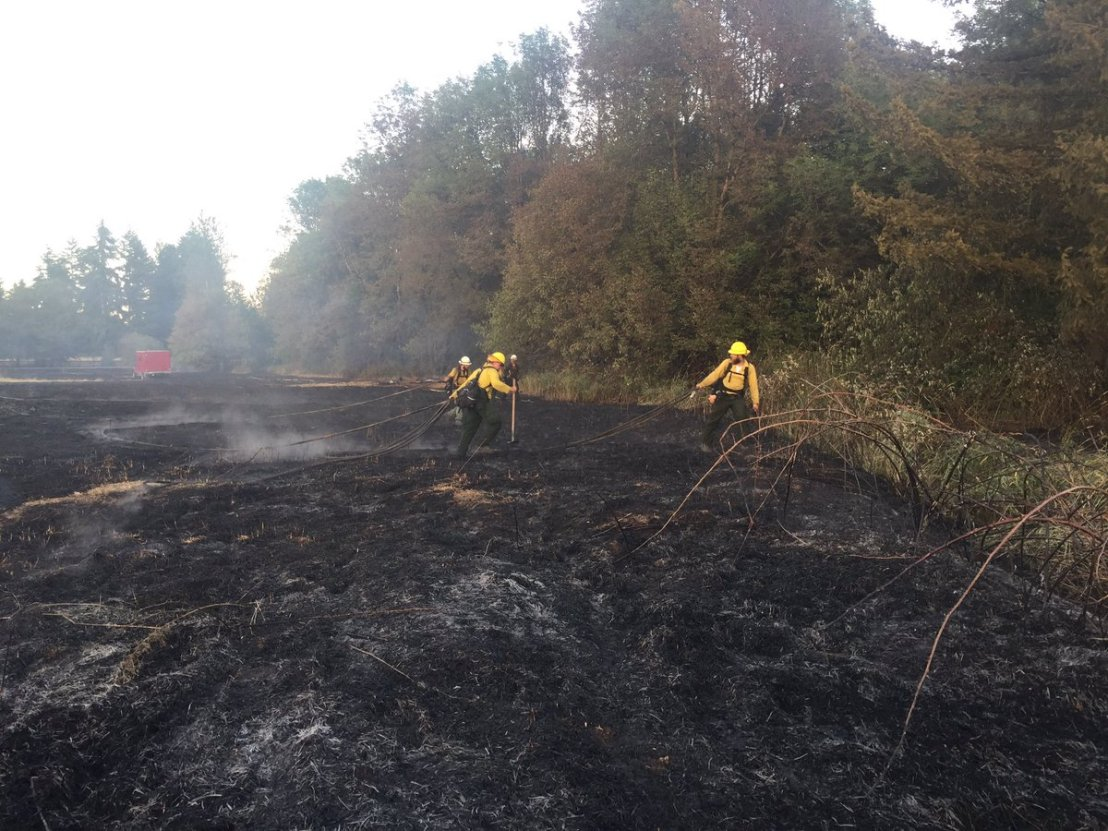 3.3-acre wildfire burns along Hwy 12 and Roseburg St in Rochester
