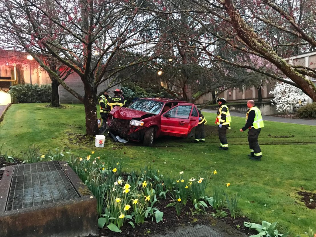 One arrested after car hits tree on CapitolCampus
